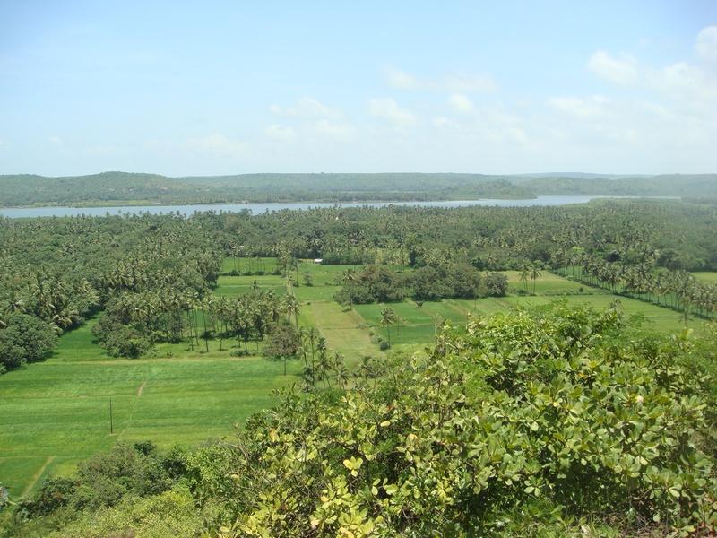 view to NE Shapora River